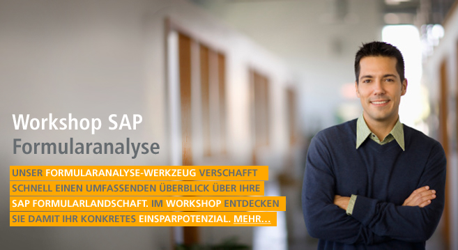 Workshop SAP Formularanalyses